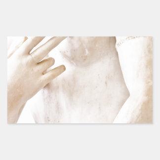Venus Rectangular Sticker
