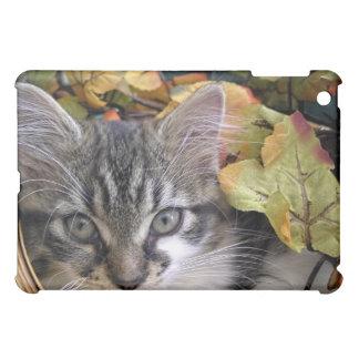 Venus, Sassy Kitty Cat Kitten, Fall Autumn Colours iPad Mini Cases