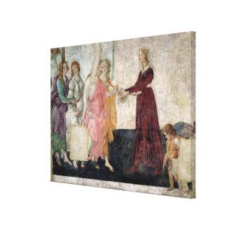 Venus y las tolerancias lienzo envuelto para galerías