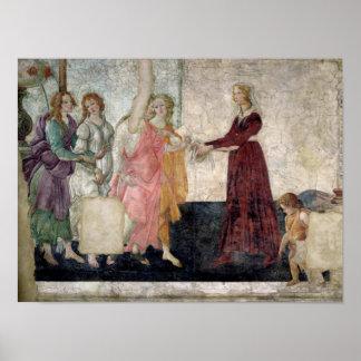 Venus y las tolerancias póster