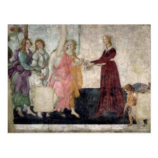 Venus y las tolerancias tarjetas postales