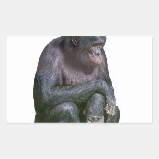 Veo monos pegatina rectangular