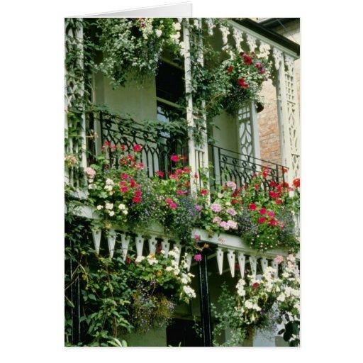 Verandah With Hanging Baskets - Geraniums, Greeting Card
