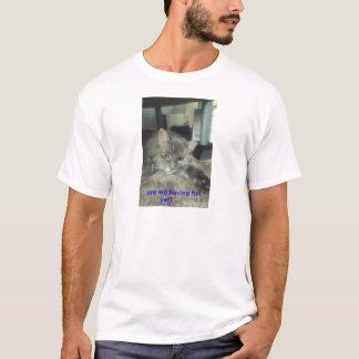 verano - camiseta del Coon de Maine