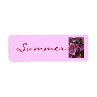 verano, coleo bonito etiqueta de remitente