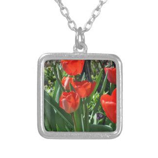 Verano del tulipán colgante cuadrado