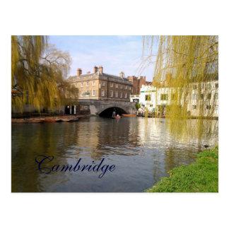 Verano en Cambridge Postal