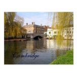 Verano en Cambridge Postales