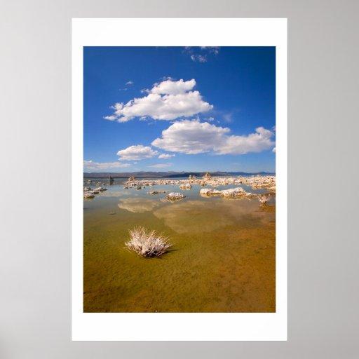 Verano en el mono lago póster