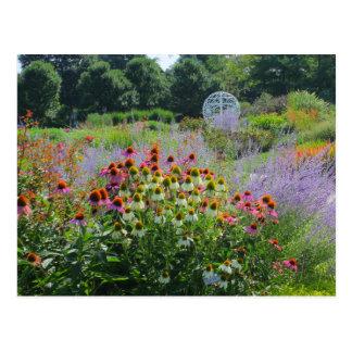Verano en los jardines que dan un paseo 2013 tarjeta postal