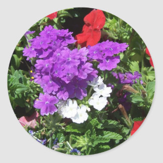 Verano feliz 2011 pegatina redonda