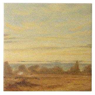 Verano - paisaje de la tarde (aceite en lona) azulejo cuadrado grande