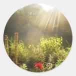 Verano Sun en Central Park, New York City Etiqueta Redonda