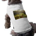 Verano Sun en Central Park, New York City Camisas De Mascota