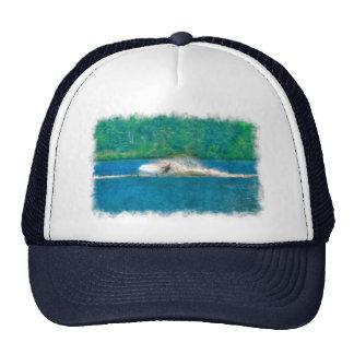 Verano Waterskiier y lago Gorras