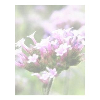 Verbena Bonariensis Letterhead
