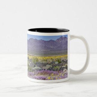 Verbena de arena y oro del desierto en el cráter taza de dos tonos