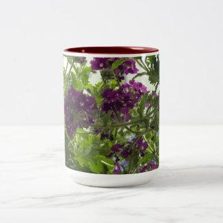 Verbena púrpura que remolina taza de dos tonos