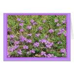 Verbena salvaje Notecard floral Tarjeton