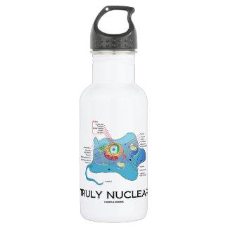 Verdaderamente nuclear (eucariota animal de la