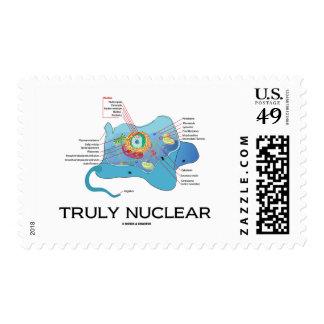 Verdaderamente nuclear (eucariota animal de la envio