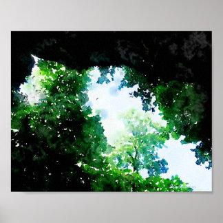Verdant Foliage 8x10 Canvas Poster Print