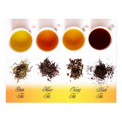 Verde, amarillo, Oolong, y té negro Postal