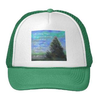 Verde azul del rezo de la serenidad gorro