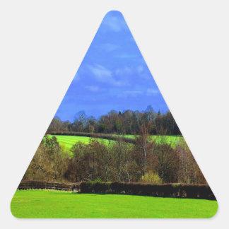 Verde azul y paz calcomania de triangulo personalizadas