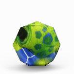 Verde colorido de la tortuga gruñona