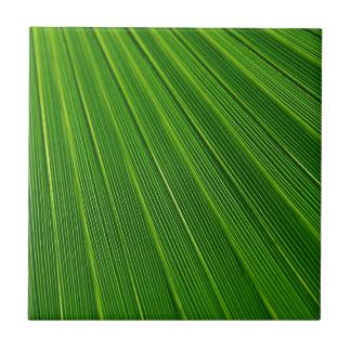 Verde colorido del extracto de la hoja de la azulejo cuadrado pequeño