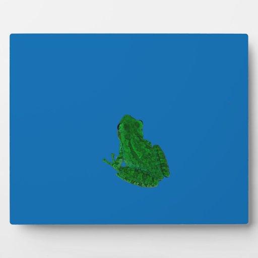 verde colorized contra el azul que mira para placas de plastico