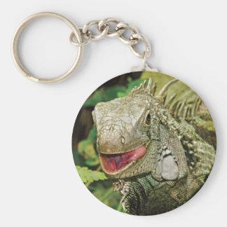 Verde de la iguana llavero redondo tipo pin