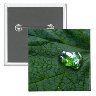 Verde de la rana pin cuadrado