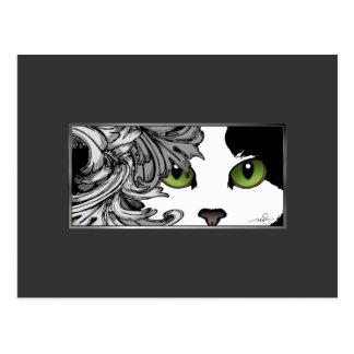 Verde de los ojos de gato postal