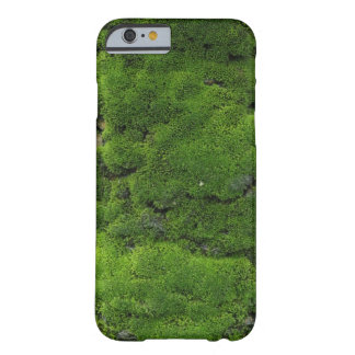 Verde de musgo funda de iPhone 6 barely there