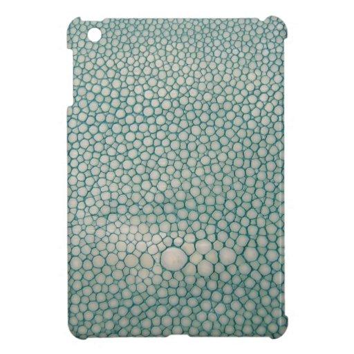 Verde de Shagreen Seafoam