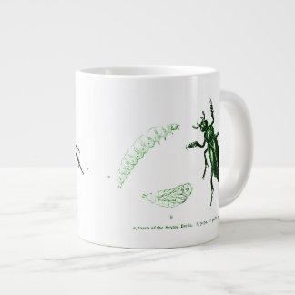 Verde del escarabajo el   del sacristán del taza grande