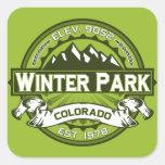 Verde del logotipo del parque del invierno calcomanía cuadradase