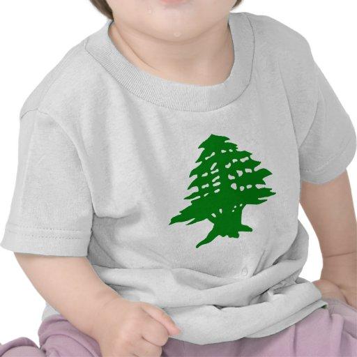 Verde del soporte camisetas
