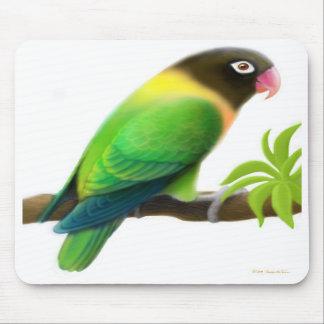 Verde enmascarado Mousepad del Lovebird Tapete De Ratón