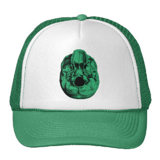 Verde humano anatómico de la base del cráneo gorras
