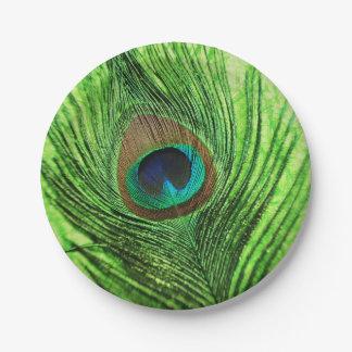 Verde lima del pavo real plato de papel
