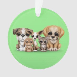 Verde lindo del retrato de los perritos, del gatit