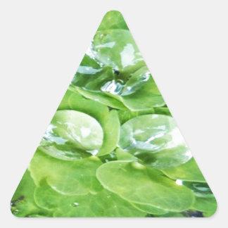 Verde magnífico pegatina triangular