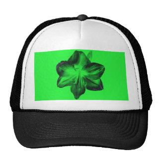 Verde oscuro en Amaryllis verde claro Gorro