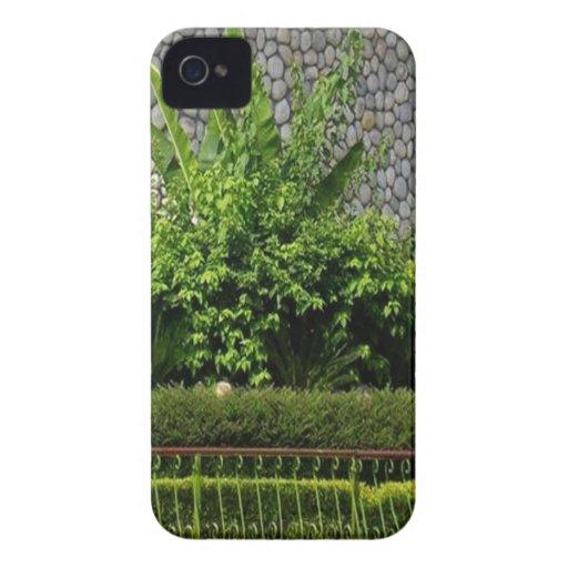 Verde perfecto de la imagen: Pared imperecedera de iPhone 4 Coberturas