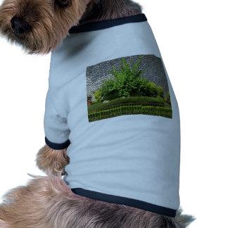 Verde perfecto de la imagen: Pared imperecedera de Camiseta Con Mangas Para Perro