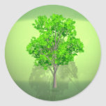 Verde que va etiqueta redonda