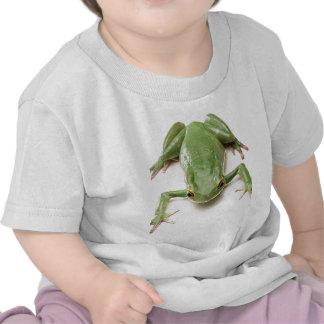 Verde-Rana Camiseta